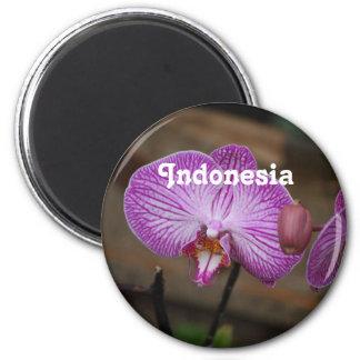 Orquídeas indonesias iman de frigorífico