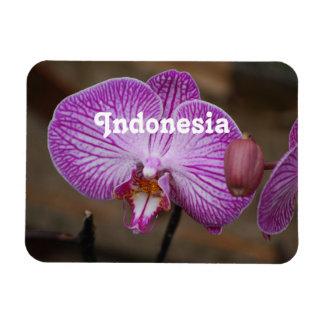 Orquídeas indonesias imán de vinilo