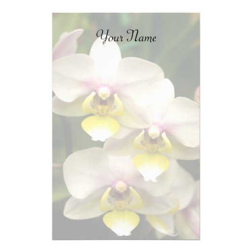 Orquídeas inmóviles papelería personalizada