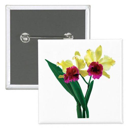 Orquídeas magentas y amarillas pins