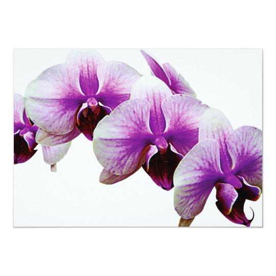 """Orquídeas magentas y blancas invitación 5"""" x 7"""""""