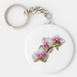 Orquídeas magentas y blancas pálidas llavero redondo tipo pin