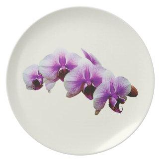 Orquídeas magentas y blancas platos