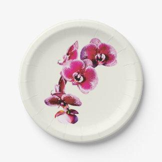 Orquídeas marrón vivas del Phalaenopsis Platos De Papel