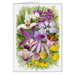 Orquídeas Notecard floral de la antigüedad/del Tarjeta Pequeña