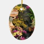 Orquídeas Ornamentos Para Reyes Magos