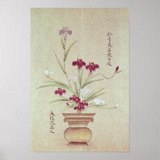 Orquídeas Posters