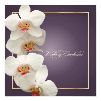 Orquídeas/phalaenopsis de PixDezines Anuncio