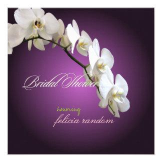 Orquídeas/phalaenopsis de PixDezines Comunicado