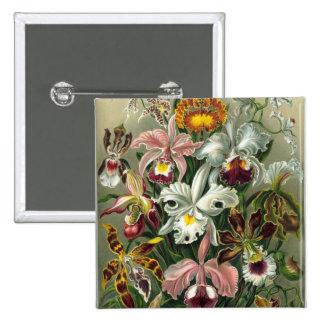 Orquídeas Pins