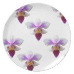 Orquídeas Platos