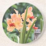 Orquídeas Posavasos Diseño