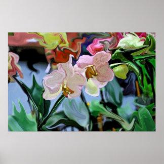 Orquídeas Póster