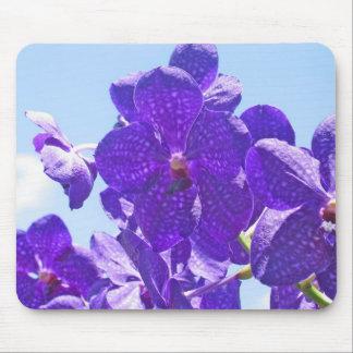 Orquídeas púrpuras/azul tapetes de ratón