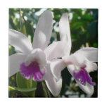 Orquídeas púrpuras blancas y rosadas teja cerámica