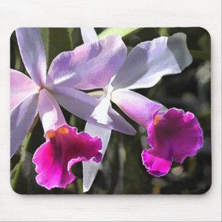 Orquídeas púrpuras el tocar la trompeta alfombrillas de raton