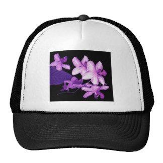 Orquídeas púrpuras exóticas gorras de camionero