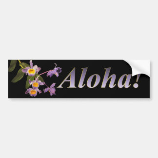 Orquídeas púrpuras - pegatina para el parachoques  etiqueta de parachoque