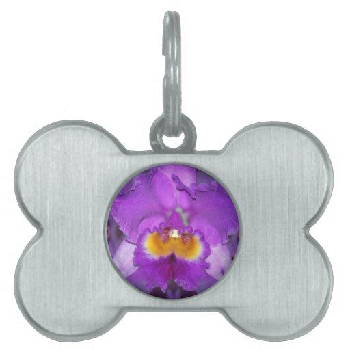 Orquídeas púrpuras placa de mascota