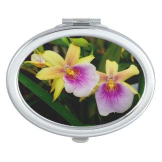 Orquídeas púrpuras rosadas amarillas de la puesta espejo compacto