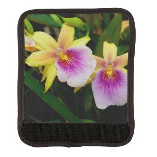 Orquídeas púrpuras rosadas amarillas de la puesta funda para asa de maleta