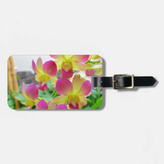 Orquídeas rosadas amarillas etiquetas bolsas