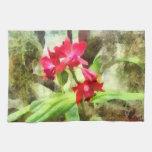 Orquídeas rosadas de Cattleya Toalla De Mano