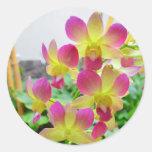 Orquídeas rosadas de Yelow Pegatina Redonda
