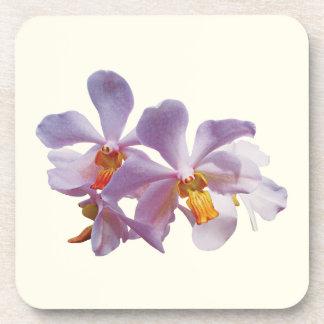 Orquídeas rosadas delicadas posavasos de bebida