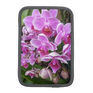Orquídeas rosadas fundas iPad mini