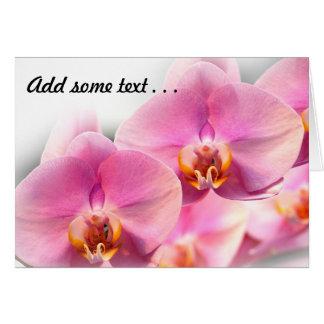 Orquídeas rosadas hermosas en un fondo suave tarjeta de felicitación