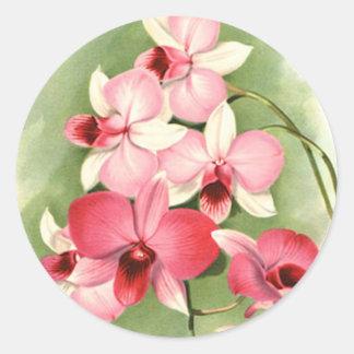 Orquídeas rosadas - pegatina