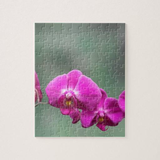 Orquídeas rosadas rompecabezas con fotos