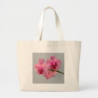 Orquídeas rosadas radiantees bolsas