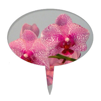 Orquídeas rosadas radiantees figuras para tartas