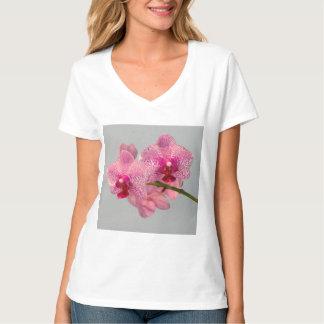 Orquídeas rosadas radiantees playeras