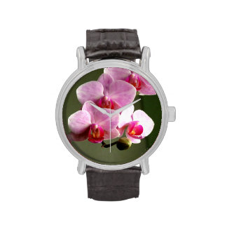 Orquídeas rosadas relojes