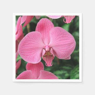 Orquídeas rosadas servilleta de papel