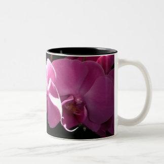 Orquídeas rosadas taza dos tonos