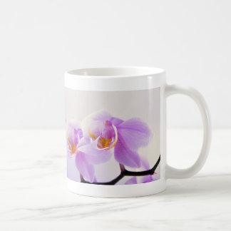 Orquídeas rosadas y blancas taza