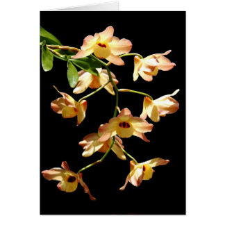 Orquídeas salvajes tarjeta de felicitación