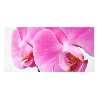 Orquídeas Tarjeta Personal