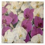 Orquídeas Tejas Ceramicas