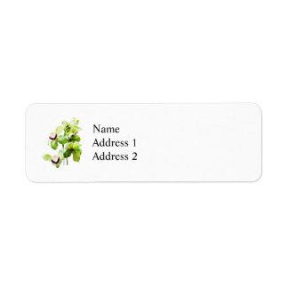 Orquídeas verdes del Cymbidium Etiqueta De Remite