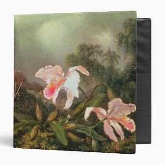 Orquídeas y colibríes, 1872 de la selva