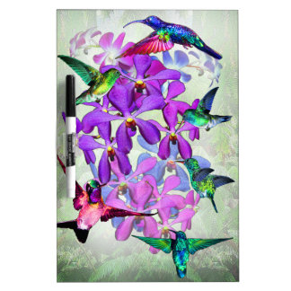 Orquídeas y colibríes pizarras