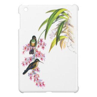 Orquídeas y colibríes rosados de Juan Gould