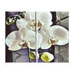 Orquídeas y dril de algodón blancos impresiones en lona estiradas