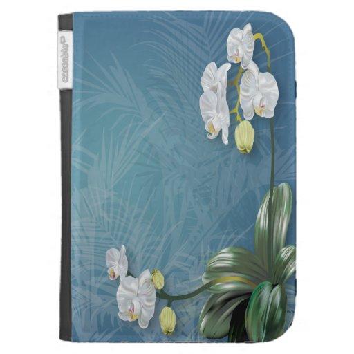 Orquídeas y helechos