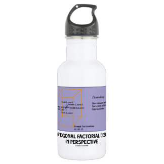 Orthogonal Factorial Design In Perspective Stainless Steel Water Bottle